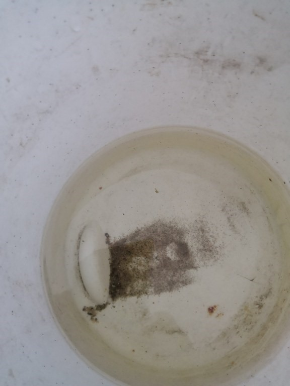 Bohrbrunnen Klarpumpen 4